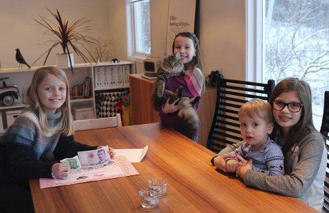 Ville bidra: Guro Bøyum-Ramsvik (9), Mathea Neraas Jensen (9) og Vilde Bøyum Ramsvik (13) ville gi noe tilbake til Dyrebeskyttelsen etter at de fikk adoptere katten Molly. Her sammen med lillebror Olav Bøyum (2). Foto: Ingrid Henriksen Juell