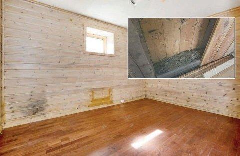 OMFATTENDE ROTTEAKTIVITET: Et ektepar har fått 250.000 kroner i erstatning, etter at de fant rotter «overalt» i boligen. Foto: Montasje
