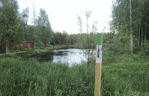 STOLPEJAKT: Finnskogen turistforening får 200.000 kroner til stolpejakt.