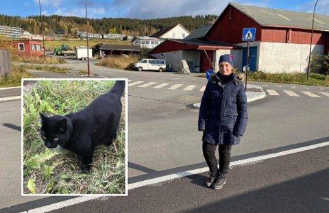 I Nordsetervegen ble Bagheera (2) påkjørt og drept. Flere mener sjåføren gjorde feil etter ulykken. Ingun Nesfeldt (bildet) gikk tur med en venninne da ulykken skjedde.