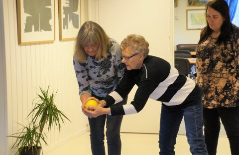 INSTRUKSJON: Lillian Bølviken fra Gran får opplæring av Karin Hellebust fra Harestua. På Harestua har de spilt Bowls i over to år. Toril Bilden fra Brandbu følger med.