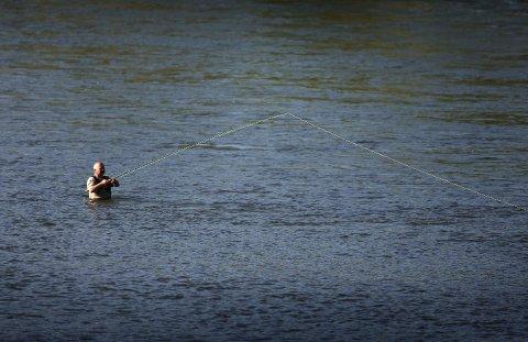 Fiske: Det fanges stadig færre laks, sjøaure og sjørøye i norske elver.  Foto: Gorm Kallestad / NTB scanpix