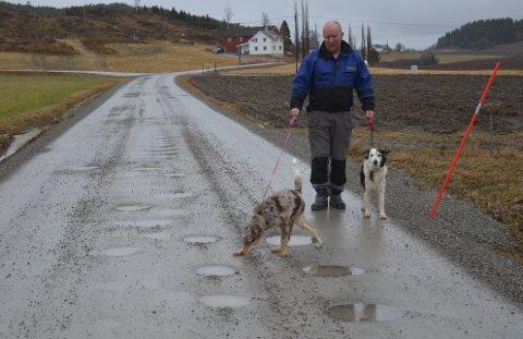 HULLETE VEI: Tore Berg som er på luftetur med hundene sine synes Loavegen egner seg best for myke trafikanter akkurat nå. Selv om veien ble oppgradert i fjor så kom hullene tilbake med våren, til ergrelse for alle bilister.