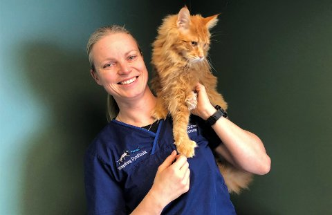 BEKREFTER SYK KATT: Veterinær Laila Solvang, daglig leder for Kongsberg Dyreklinikk bekrefter at de har fått inn et tilfelle av salmonellasmitte på katt. Katten på bildet har derimot ikke Salmonella, men var inne for en tannbehandling. Foto: Privat