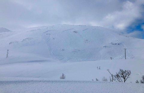 FINNVIKDALEN: Skredet som politiet har fått melding om, ved Finnvikvatnet.