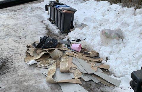 Søppel dumpes til stadighet ved Rauanveien. Hvem driver på slik spør Thorbjørn Aker.