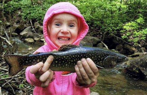 EN VINNER: Barn og fiskeglede er et godt bildemotiv. Her er Embla Nilsen fra Hakadal med en bekkerøye fra et tidligere år. Foto: Privat