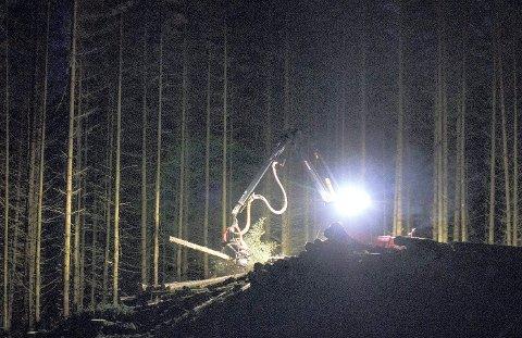 TRIST: Tirsdag kom nyheten om at Norske Skogindustrier har bejært oppbud, men at det nå håpes på norske kjøpere av konkursboet.