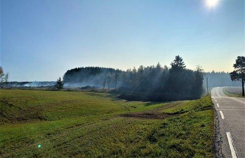 STUBBEBRENNING: Bonde Hans Arnesen brenner flere hauger med stubber. Ettersom vindretningen skifter blåser røyken over forskjellige nærliggende eiendommer. Bildet er tatt fra Slituveien, lørdag formiddag.