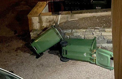 DENUSKYLDIGEFIKKSVI:Velta søppelspann på Likollen.