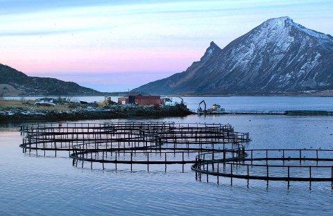 Ny retning: Samtidig som eksporten fra Nordland er rekordhøy, sliter stadig flere kommuner med fraflytting og sosiale problemer, det bør føre til en ny innretning i nordområdepolitikken.