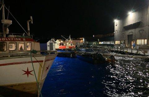 I Indre havn i Honningsvåg er det nå enda mer lys. Under vannet.