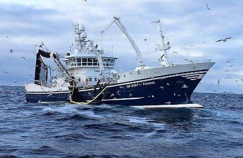 I GANG: Ringnotbåten Fiskebas frå Florø var den første til å melde inn fangst av makrell i norsk sone. No er sesongen opna og kvaliteten på fangsten var god.