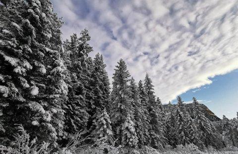 VERT LIGGANDE: Trass mildvêr i vente, er sjansane store for at snøen vert liggande litt til. Her frå Sande i Sunnfjord.