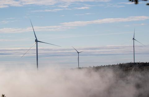 TIL DEPARTEMENTET: La Naturen Leve sender vindkraftsaken i Kjølberget til departementet. Både retten og fylkesmannen i Innlandet sier nei til å stanse arbeidet.