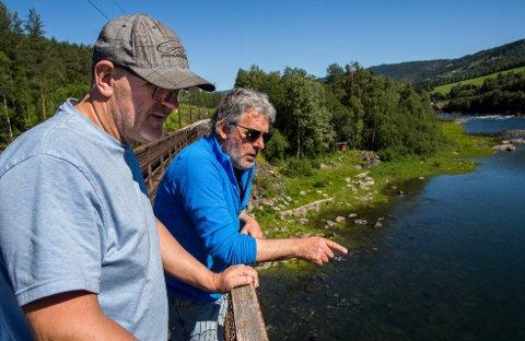 FORTVILER: Jan Egil Strandum og Geir Ivar Borgen er lite fornøyd med tilstandene i og langs Lågen. De tilbringer hele sommeren ved elva, men mener ulovlig fiske og forsøpling legger en stor demper på opplevelsene.Alle foto: Aleksander Myklebust