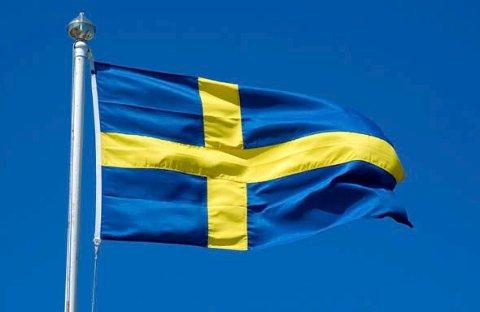 10 MILLIONER: Sverige har nå passert 10 millioner innbyggere, og også Haldens nabokommuner oppleverøkning i folketallet.