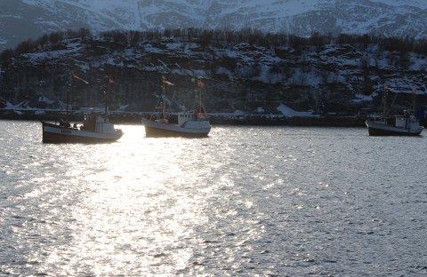 Alstahaug Kystlag-båtene Dønning (fra v.), Leiskjær og Nykværing på vei til VM i skreifiske.