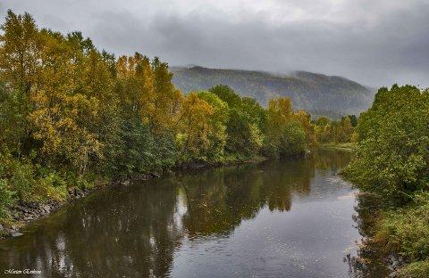 SAGN: Idylliske Skjerva i høstfarger. Det finnes sagn som forteller om ting som har skjedd i elva som på dialekt ofte får navnet Skjervo.Foto: Morten Eriksen