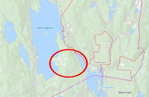 Det er i dette området mellom Hersjøen og Steinsjøen på Totenåsen at en jeger sier han har observert ulv. Kart: 1881
