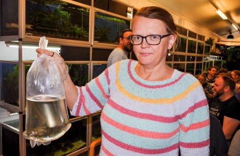 MÅ BYTTE: Anita Løveseter må bytte ut sine to synodontis, som har blitt for store for hennes akvarium. Auksjonen er en perfekt anledning for å selge dem og finne seg noen nye, og mindre, fisk.