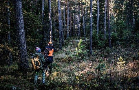 Du kan trygt ferdes i skogen selv om det er jakt, sier Jan Lie i viltnemnda Rakkestad.
