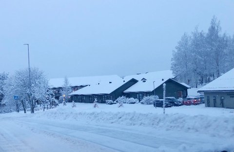 Preget: Situasjonen i Andebo var under smittesituasjonen kritisk på enkelte dager.  Foto: Marita Lundsrud Berg