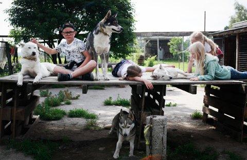 "GÅRDSBESØK: Jens Ingvald Christensen (9) var blant de mange som fikk tilbrakt en dag på Vestre Knolden gård i forbindelse med ""Sommer i bøgda""-tilbudet mandag."