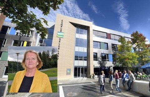 Ann Gøril Hugaas som er faggruppeleder for barnehagelærerutdanningen sier studiet passer både for studenter bosatt i regionen, men også for studenter bosatt andre steder.