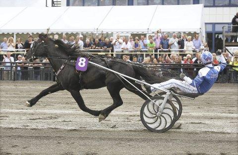BLE SLÅTT: Odd Herakles ble knust av Ulsrud Tea, men også slått av Bø-hesten Roli Eld lørdag.