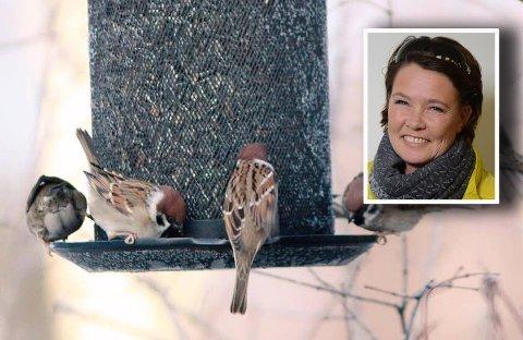 POPULÆRT FUGLEFÔR: På fritiden er lokalpolitiker fra Færder, Cathrine Palm Spange (Ap), fugleentusiast. Hun håper folk er flinke til å tenke litt ekstra på fuglene i denne tiden og har mange tips til hva slags fuglefôr som lager litt ekstra liv i hagen.