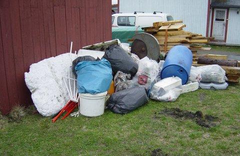 Yttersetså: Egil Hansen og 18 andre dugnadsivrige plukket cirka 20 sekker med avfall. Nå venter de på at Iris Salten skal plukke opp sekkene.