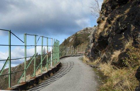 Hendelsen fant sted på turveien mellom Brushytten og Rundemanen i januar i år.
