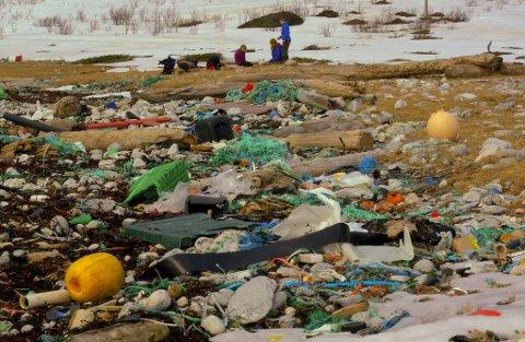 Gamle trosseendar, plastflasker, blåser, dunkar - alt dette kan leverast gratis på SAR dersom du deltek på Strandryddedagen. Flora kommune vil ta rekninga for strandavfallet.
