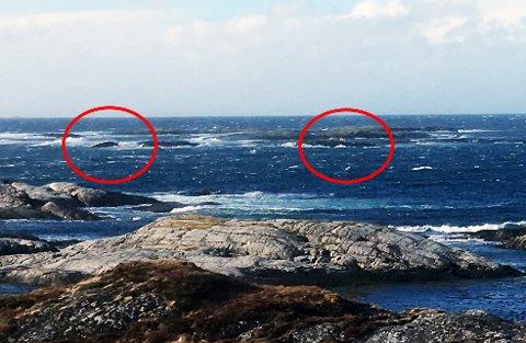 Tre personer har reddet seg opp på et skjær etter at en sjark kantret utenfor Hasseløya på Averøy. Til venstre skimtes båten, til høyre de tre personene.