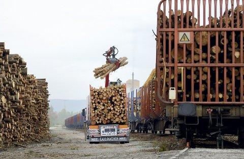 FOR TRANGT: Ønsket kapasitet ved Norsenga er én million kubikkmeter tømmer årlig, mens dagens anlegg bare er dimensjonert for under det halve. Riktignok håndteres rundt 700.000 kubikkmeter tømmer der i dag, men terminalkapasiteten er sprengt – og skognæringen etterlyser snarlig flytting nordover til et større område.