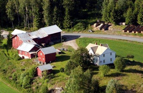 SMÅBRUK: Drømmen om småbruk lever, og Aina Tvengsberg er megler på et bruk på Grue vestside. Med stor bygningsmasse.