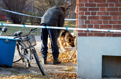 De to drapsmistenkte svenskene som ble pågrepet i Bodø, er siktet for å ha drept en mann i 30-årene i Sundsvall. Bildet er fra åstedet. Foto: Linnea Hellgren, ST