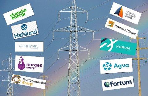 Stort utvalg: En rekke ulike selskaper konkurrerer om å selge strøm. Mange av dem tilbyr også et utall ulike avtaler. Akkurat nå kan du velge mellom over 100 forskjellige spotprisavtaler i Oslo.