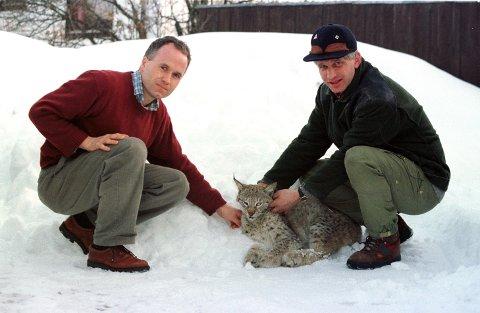 FOTOGRAFERT I LP: Dette var den første gaupa som ble skutt, etter at kvotejakt på gaupe ble innført i 1996. Her er Halvor Garås, t.h., sammen med veterinær Inge Saunes.
