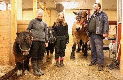 STORE OG SMÅ: Lærlingene Frida Hammeren og Astrid Graue Skjolden (f.v.) sammen med stallmester og faglærer Jørgen Kvarme. Hester i alle størrelser kan utføre viktige oppgaver.