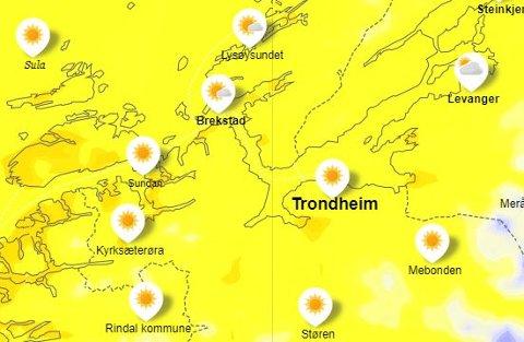 Skjermdump fra meteorologenes temperaturvarsel. Onsdag 20. mai klokka 13.00.