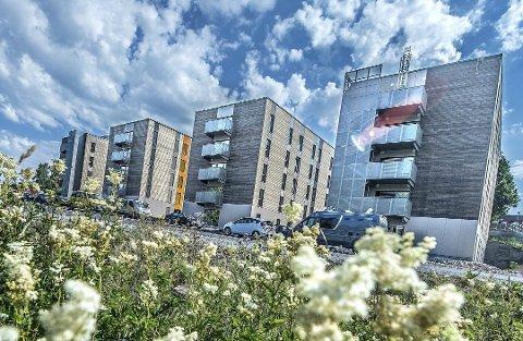 I 2014 sto fire nye blokker i fem etasjer og totalt 227 hybler klare for studentene på Ås.