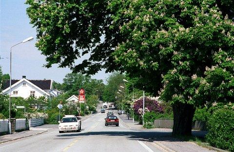 Frodig omgitt av hage- og parkvekster løper Larviksveien inn i Stavern. I forgrunnen de karakteristiske kastanjetrærne, som senere ble felt (i 2010).