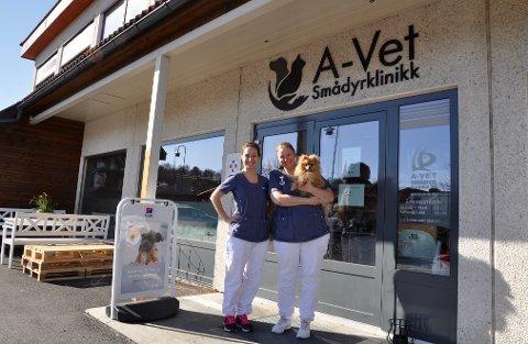 NYSATSING: Medlina Zulic og Rakel Omlid Wold ved A-Vet Smådyrklinikk er blant de ansatte som skal starte opp et nytt konsept med klinikken A-Vet Mini. Mandag 23. mars er de allerede i gang med å bruke lokalene, da i første omgang for å sikre et helsetilbud for dyrene i koronatider.