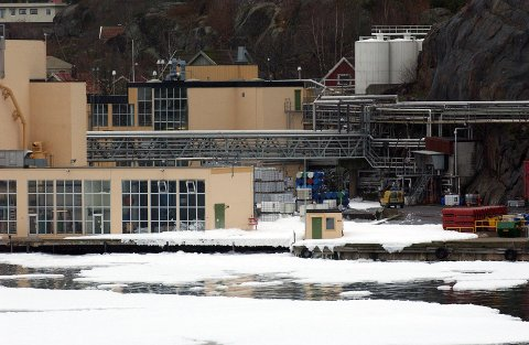 SKUMLAGT: Ved en øvelse i 2005 ble kokeriet på Jotunfabrikken skumlagt. (Arkivfoto: Olaf Akselsen)