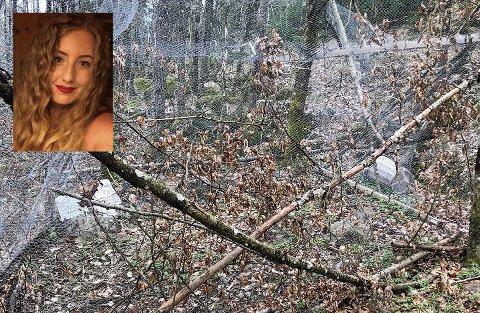 MISTENKELIG: Julie Folvik kom over denne innhegningen i skogen ved Stokke da hun gikk tur. Nå håper hun den blir fjernet.