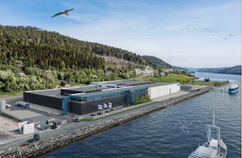 STORT: Anlegget som SalMar er i gang med i bygge på Tjuin vil bli enormt. I mars 2023 skal den første rogna legges i klekkekar i det 17000 kvadratmeter store bygget,. Det tilsvarer cirka tre fotballbaner. Vannledningen vil bli ført inn cirka midt på bygget.