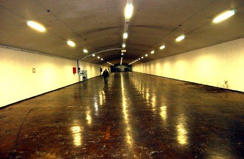 FJELLHALLENE: Kommunestyret villle først stenge hallene. Nå vil Færder annonsere for å skaffe leietakere.