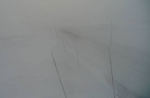Slik så det ut på riksvei 7 over Hardangervidda litt før klokken ti tirsdag formiddag. Dyranut - 1235 meter over havet.